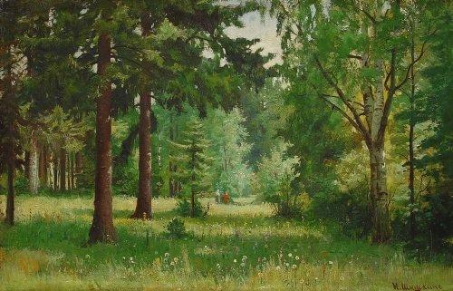 Путешествие в волшебный лес
