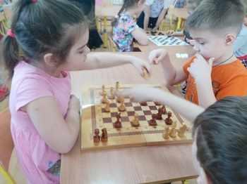 Шахматная среда