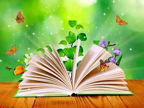 «Детективное расследование пропажи страниц из Волшебной книги Василисы Прекрасной»