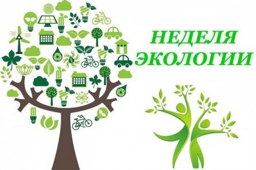 Неделя экологического образования